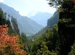 Bhutan Trek & Tour