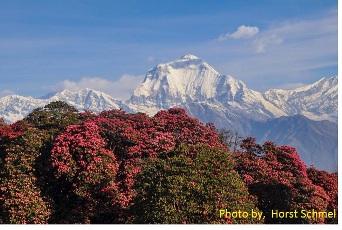 Himalaya Trek för Gesundheit